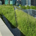 How Green Buildings Could Change Cities