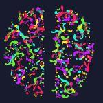 The Left Brain Right Brain Myth: Is It True?